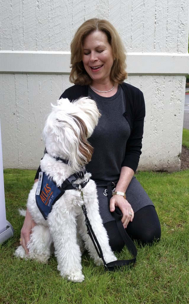 A woman is kneeling on the grass looking at her dog and smiling. Her dog, a white and brown small doodle is looking up at her. He is wearing a navy blue Atlas vest.